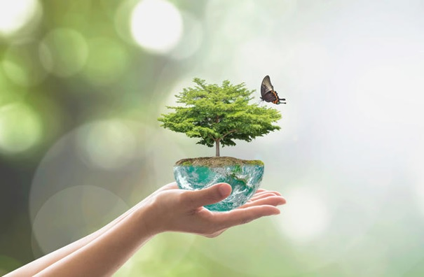 環境審査/監査に関するISOのガイダンス
