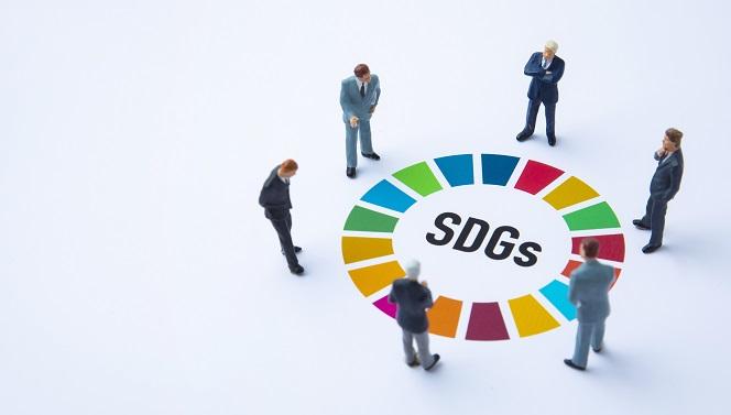マネジメントシステムアプローチで推進するSDGs: 「持続可能性、SR/SDGsアンケート」から見えて来るもの